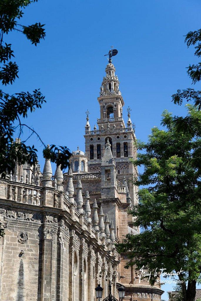 Seville-0018.jpg