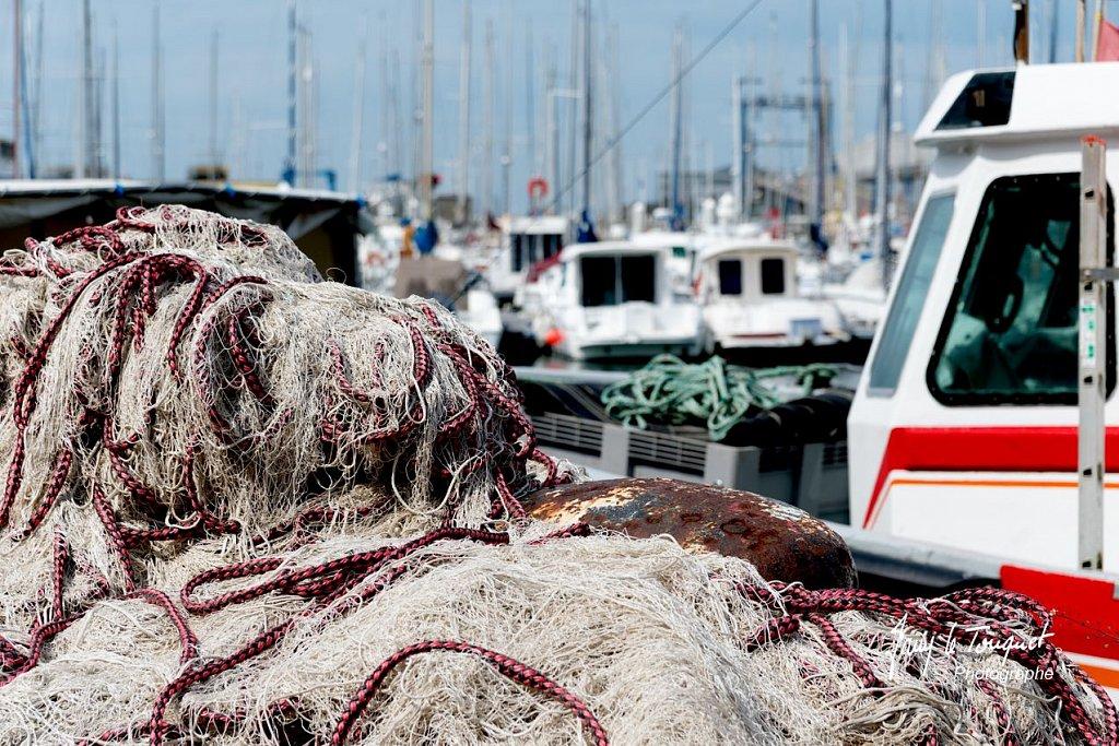 Boulogne-sur-Mer-0775.jpg