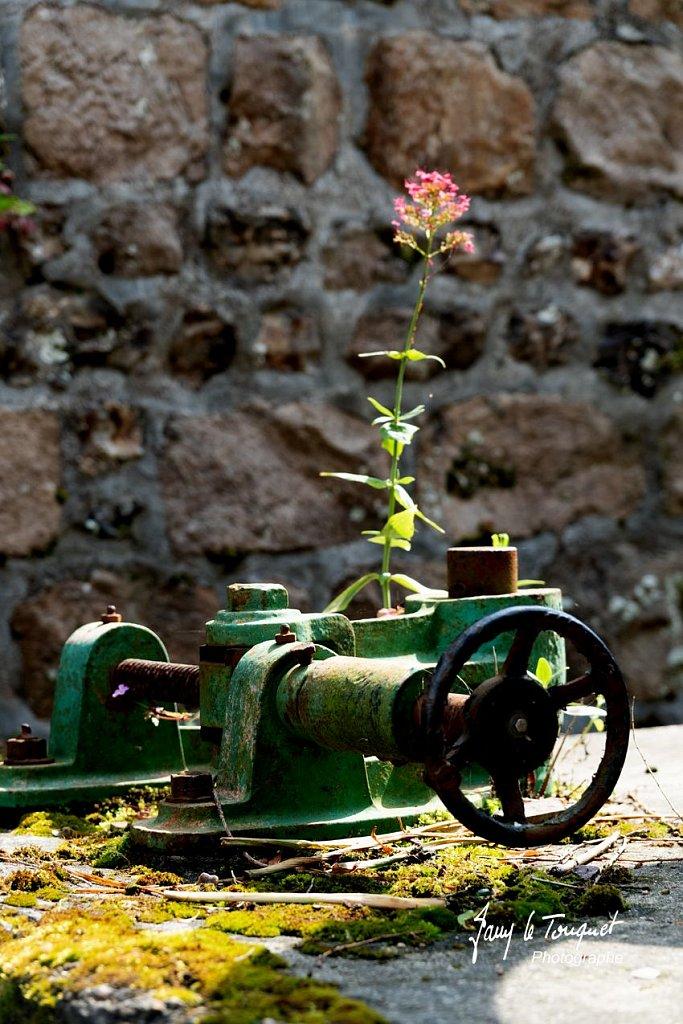Veules-les-Roses-0075.jpg