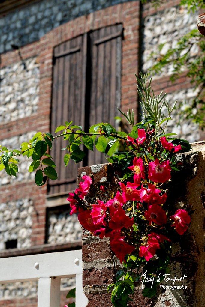 Veules-les-Roses-0124.jpg